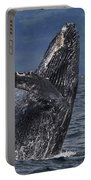 Humpback Whale Breaching Prince William Portable Battery Charger