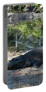 Hungry Gator Portable Battery Charger