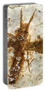 Insect Fossil Portable Battery Charger