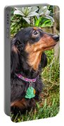 Katie Portable Battery Charger