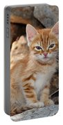 Kitten In Hydra Island Portable Battery Charger