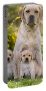 Labrador With Two Puppies Portable Battery Charger