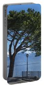 Lakeside With Trees Portable Battery Charger
