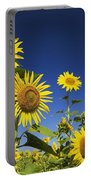 Laval, Quebec, Canada Sunflowers Portable Battery Charger