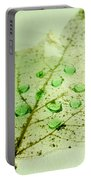 Leaf With Green Drops Portable Battery Charger