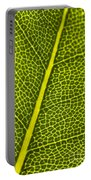 Leafy Details Portable Battery Charger