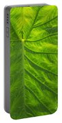 Leafy Green Portable Battery Charger