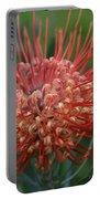 Leucospermum - Pincushion Protea - Tropical Sunburst Protea Flower Hawaii Portable Battery Charger