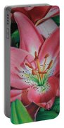 Lily's Garden Portable Battery Charger