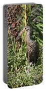 Limpkin And Apple Snail Portable Battery Charger