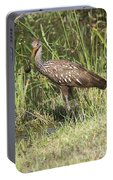 Limpkin In The Glades Portable Battery Charger