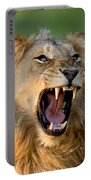 Lion Portable Battery Charger by Johan Swanepoel