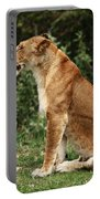 Lioness On The Masai Mara  Portable Battery Charger