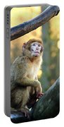 Little Monkey Portable Battery Charger