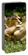 Yellow Muscovy Duck Ducklings Running In Hurry  Portable Battery Charger