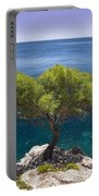 Lone Pine Tree Portable Battery Charger