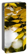 Look Up Portable Battery Charger