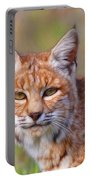 Magical Bobcat Portable Battery Charger