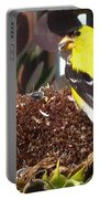 Male American Goldfinch Portable Battery Charger