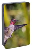 Male Anna's Hummingbird Portable Battery Charger