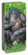 Male Bonobo Portable Battery Charger