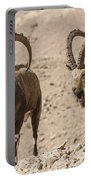 Male Nubian Ibex Portable Battery Charger