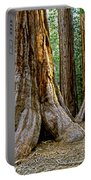 Mariposa Grove Portable Battery Charger