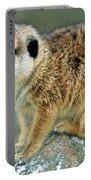 Meerkat Suricata Suricatta Portable Battery Charger