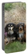 Miniature Long-haired Dachshunds Portable Battery Charger