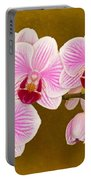 Moth Orchid Portable Battery Charger