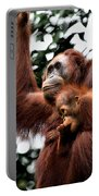 Mother And Baby Orangutan Borneo Portable Battery Charger