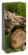 Motherly Love Portable Battery Charger