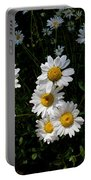 Mountain Daisies Portable Battery Charger