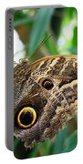 Mournful Owl Butterfly Portable Battery Charger