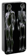 Muscles And Bones Portable Battery Charger