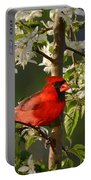 Red Cardinal In Flowers Portable Battery Charger
