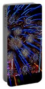 Niagara Fireworks Portable Battery Charger