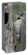 Northern Flicker At Nest Cavity Alaska Portable Battery Charger