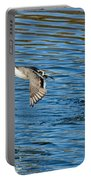 Northern Pintail Drake Taking Portable Battery Charger