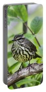 Northern Water Thrush Portable Battery Charger