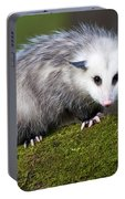 Opossum  Portable Battery Charger