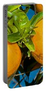 Orange Fruit Growing On Tree Portable Battery Charger