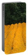 Oregon Orange Field Panoramic Portable Battery Charger