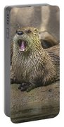 Otter North American  Portable Battery Charger