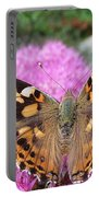 Painted Lady Butterfly Up Close Portable Battery Charger