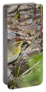 Palm Warbler Portable Battery Charger