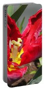 Parrot Tulip Named Rococo Portable Battery Charger