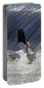 Pelican Drama Portable Battery Charger