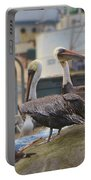 Pelican Duo Portable Battery Charger