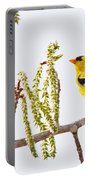 Perfect Perch Portable Battery Charger